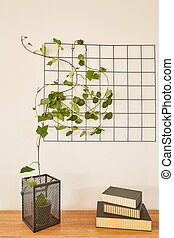 Tabletop with books and plant - Wooden tabletop with books...