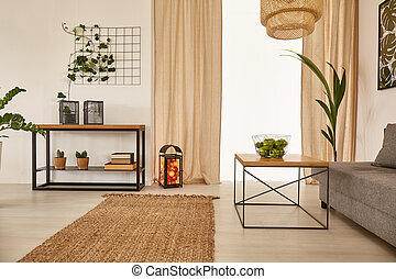 Apartment with earty decorations - Spacious apartment with...