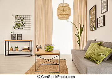 Living room with couch - Cozy living room with couch and...