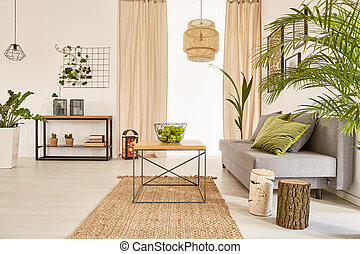 Flat with plants and couch - Well-lighted flat interior with...