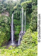 Sekumpul Waterfall view