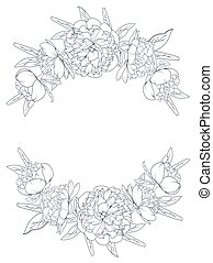 Peony flowers border frame element laurels foliage - Spring...