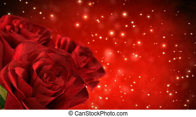 rotating red roses with bokeh particles - 3D render....