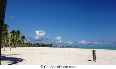 Caribbean beach nature at sunny day