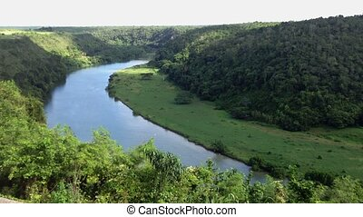 Beautiful river in tropical forest top view