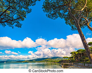 Punta Ala, Pine tree group, beach and sea bay. Tuscany, Italy