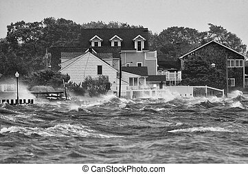 Stormy - Hurricane Irene on LI