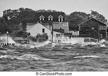 Stormy - Hurricane Irene on LI