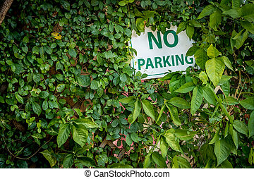 No parking sign with green leaves plants