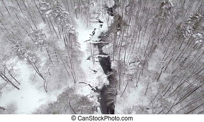 Flight above winter forest on the north, aerial top view.
