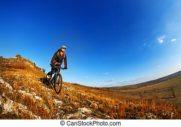 Wide angle view of a cyclist riding a bike on a nature trail...