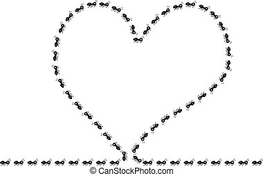 Heart made of ants