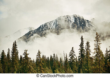 Banff National Park - Banff national park foggy mountains...