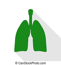 Human organs Lungs sign. Green icon with flat style shadow...