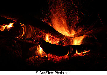 Fire flames in the night