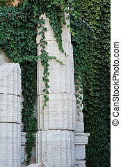 old columns with curly green plants - architectured old...