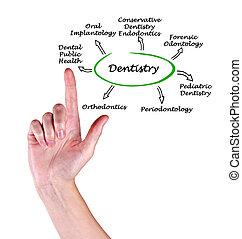 diagrama, odontologia