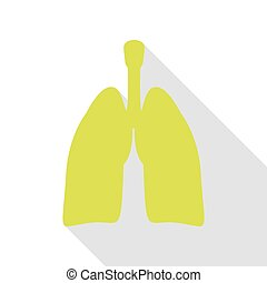 Human organs Lungs sign. Pear icon with flat style shadow...