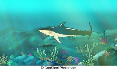 Shark Underwater - Big shark swimming in a ocean. Full color...
