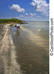 Isolated Beach, Gulf Coast - A single person examines a...
