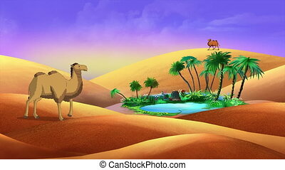 Bactrian Camels  walking in the desert. Handmade Animation