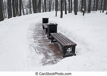 Bench in the Park with snow.