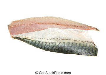 Mackerel fillets - Two mackerel fish fillets isolated on...