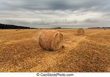 Autumn field with sheaves of hay and dramatic sky.