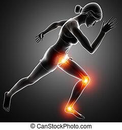 Female Leg joint pain - 3d Illustration of Women Leg joint...