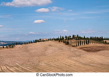 """Crete Senesi - A typical landscape of the """"crete Senesi..."""