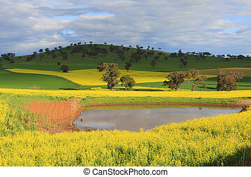 Scenic farmlands landscape with lush green pasture hills and...