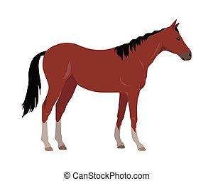 Sorrel Horse Vector Illustration in Flat Design - Sorrel...