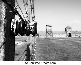 Detailed view of barb wire fence in concentration camp....