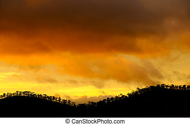 Dalat countryside in sunset with row of tree - Amazing...