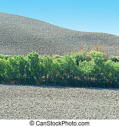 Sloping Hills - Plowed Sloping Hills of Tuscany in the...