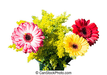 Colorful differently colored autumn flowers - Colorful...