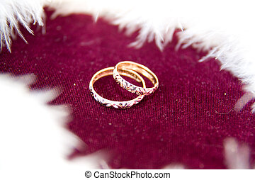 The rings on the flowers, in a box, on a white fabric on toys, colors, wedding details, wedding rings