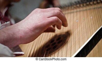 Hand Playing The Bandura, Ukrainian Musical Instrument