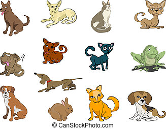 cute pets - Some cats and dogs plus a rabbit and a frog...