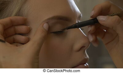 Makeup artist leads the eye - Professional stylist doing her...