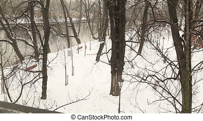 Winter landscape with river - Branches of tree on winter...