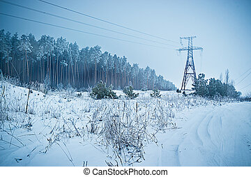 Reliance Electric transmission line on the edge of the pine...