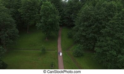 Wedding couple walking in park. 4K aerial shot