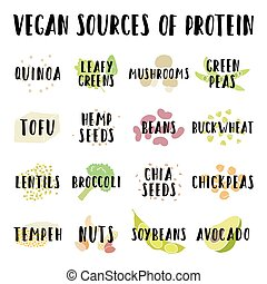 Vegan sources of protein. Vector hand drawn info...