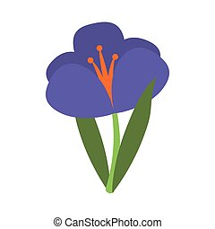 crocus plant spring floral icon vector illustration eps 10