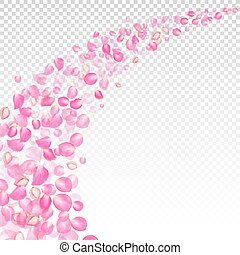 Gone with the Wind rose petals. Realistic vector pink petals...