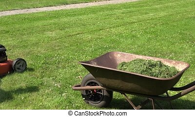 Barrow on meadow with cut grass and worker man cut lawn with mower.