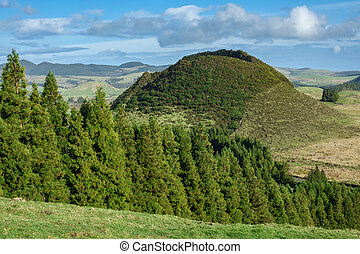 Volcano in Azores islands - Landscape with forest and...