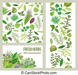 Realistic popular culinary herbs. Labels set. Shop sign. Stripes and cards