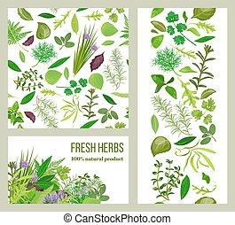 Realistic popular culinary herbs. Labels set. Shop sign....